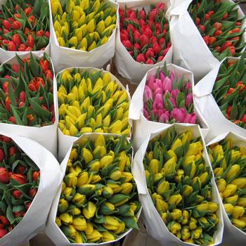 Цветы оптом тюльпан ландышами пионами