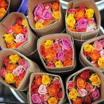 Оптом подольск цветы оптом тюльпан